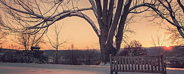 copac_iarna